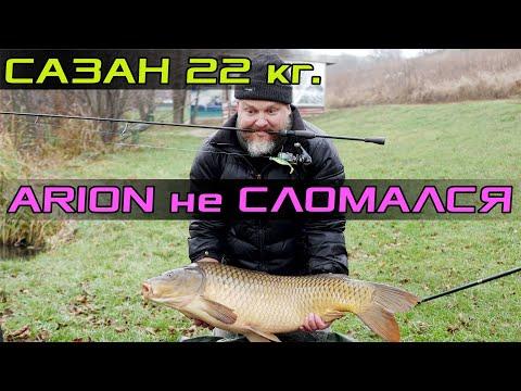 Сазан 22 кг. Arion CrazyFish не сломался! Краш-тест Arion.