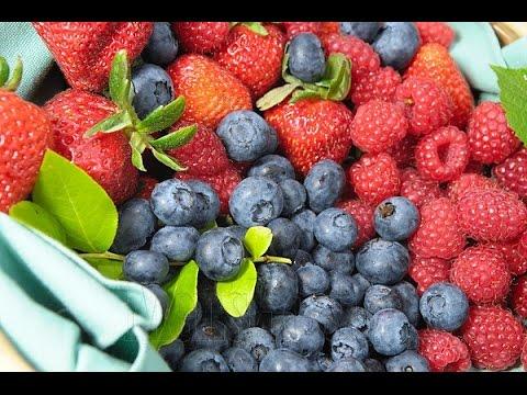 Juicing Berries & It's Benefits