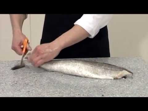How to steak and fillet a Hake | 206