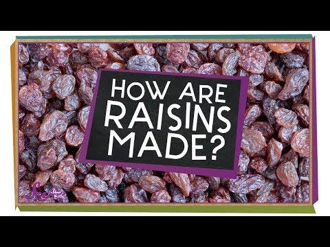 How Are Raisins Made?