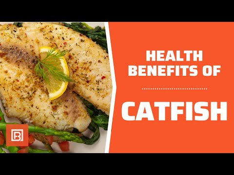 Health benefits of Catfish: Is it healthy for you?