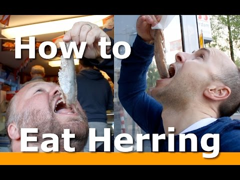 3 BEST ways to Eat Herring in Amsterdam with Woltersworld