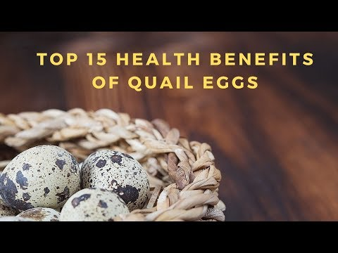 Top 15 Health Benefits of Quail Eggs I Diabetes Health Free