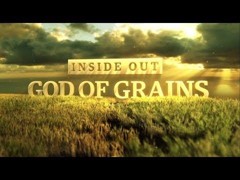 KRBL -INDIA GATE BASMATI RICE- THE GOD OF GRAINS