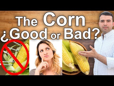 IS CORN HEALTHY? - The Dangers and Health Benefits of Corn - Best Corn and Who Can Eat It