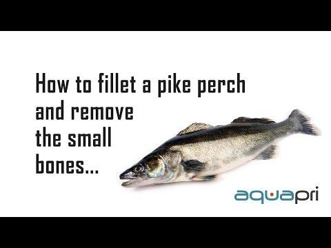 AquaPri - How to fillet a Zander (pike perch)