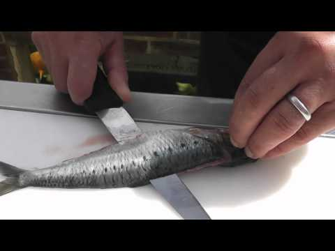 Passionate About Fish - How to prepare Sardines